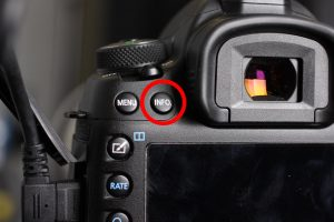 Info button on the back of the Canon 5D Mark IV